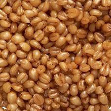 blé cuit 1.5kg/3.5kg/10kg